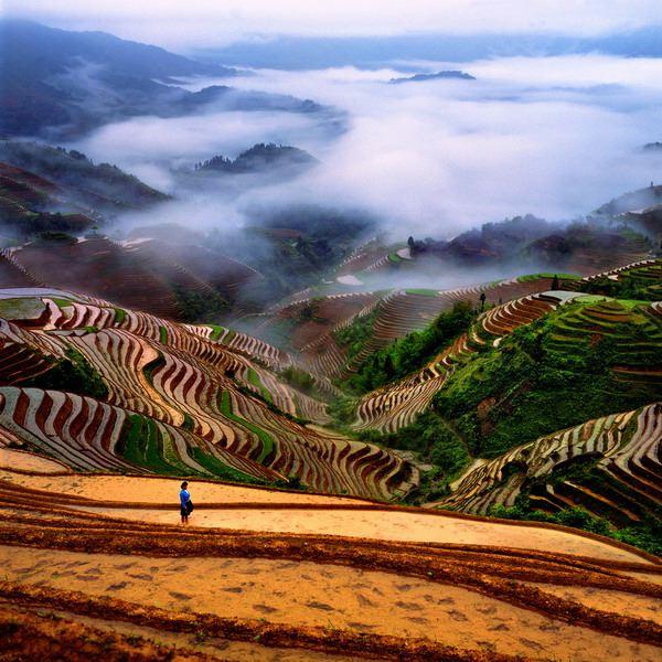 china-landscape-1.jpg
